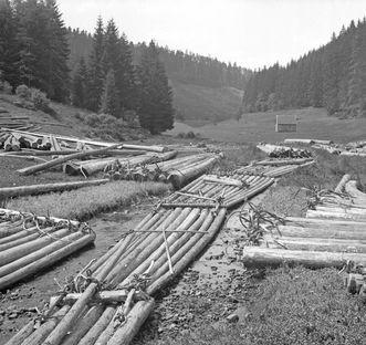 Flöße aus Baumstämmen; Foto: Landesmedienzentrum Baden-Württemberg, Otto Feucht